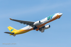 NRT Cebu Pacific Air A330