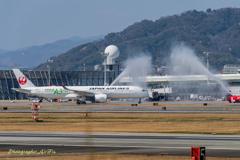 A350 就航 6(大阪へいらっしゃ~~~い!)