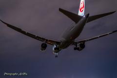 landing posture Ⅱ