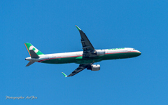 EVA AIR Airbus A321 in NRT さくらの丘