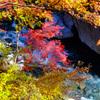 中津峡の秋