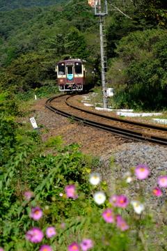 単線ローカル列車