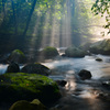 光り降る渓
