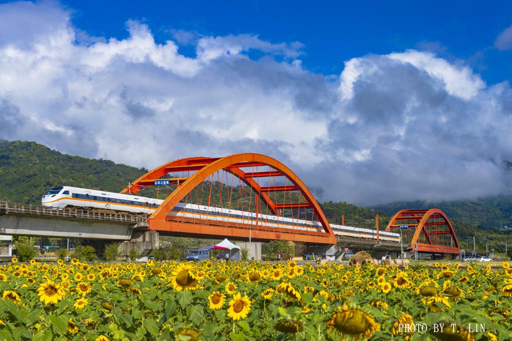 ひまわり畑と鉄橋とタロコ号