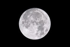 中秋の名月のアップ