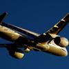 黄金の機体