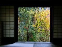 窓の外は秋色