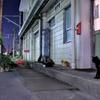 夜の扇町駅2
