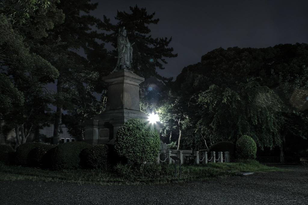 真夜中の掃部山公園