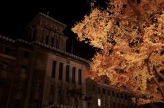 真夜中、神奈川県庁