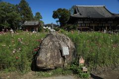 般若寺カンマン石