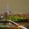 江戸川摩天楼