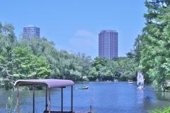 石神井公園 ボート池