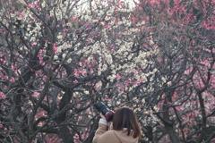 梅花に集中〜 ^_−☆
