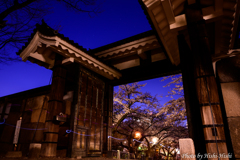 Dokodemo-Door ~ 桜の園へ、再び♪