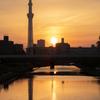 Sunset in Tokyo ~ 未知との遭遇