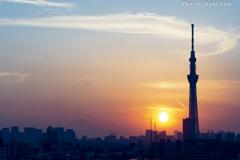 Sunset in Tokyo ~ 新しい仲間とともに