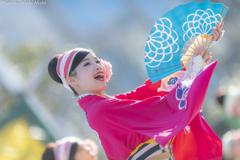 ふるさと祭り東京 12th