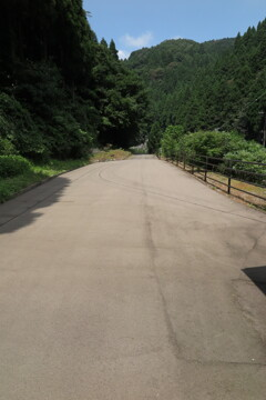 緑の道 起点