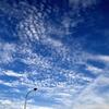 秋の午後の空? その2