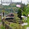 近鉄電車 室生口大野駅付近