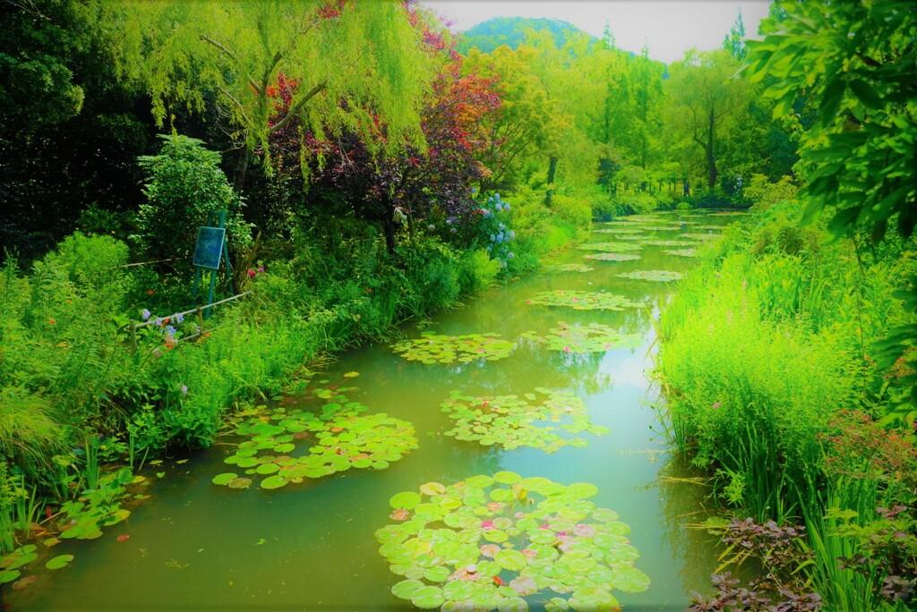 北川村モネの庭1