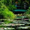 北川村モネの庭10