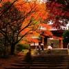 新居浜瑞応寺ずいぶん赤くなりました