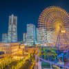 YOKOHAMA YELLOW NIGHT