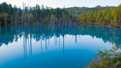 早朝の青い池
