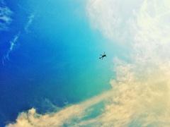 空にアメンボ