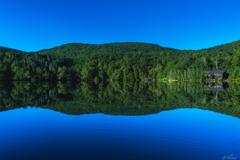 静かな湖畔の森の中から