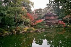 秋の京都御所9