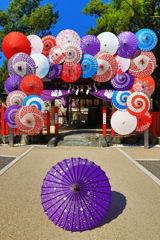 別小江神社~紫~