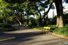 朝の通勤風景 IMGP6964