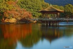 奈良 浮御堂