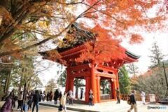 比叡山延暦寺ー1
