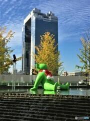 大阪にも秋が・・・。