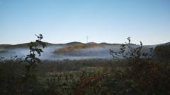 霧が取り巻く風景