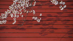 Red galvanized iron