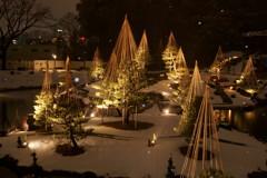 金沢城公園ライトアップ2