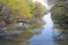 渡良瀬遊水地 28