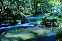 初秋の湯川 (1)