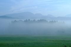 霧の小田代ヶ原