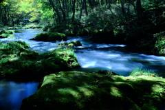 木漏れ日の渓流 (2)