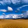 五十嵐浜砂丘