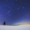雪原の星屑たち