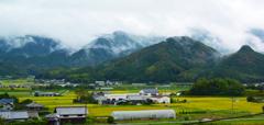 雲が散る・・愛媛県
