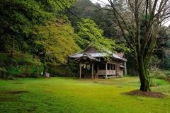 春を迎える神社