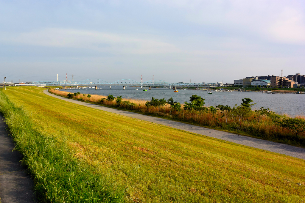 江戸川情景